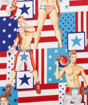 Alexander Henry All American fabric 7933 A Multi