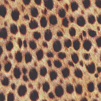 Animal Kingdom by Robert Kaufman SRKD19871286 Wild