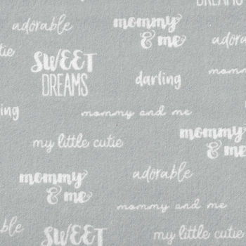 Cubby Bear Flannel by Whistler Studios 513717 Pastel Blue With Text