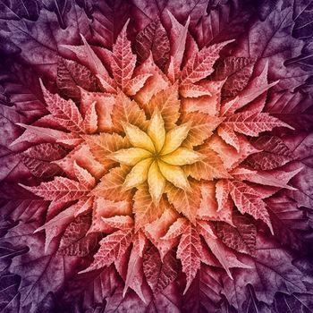 Dream Big Leaf Digital Panel By Hoffman Fabrics R4617 428 Mulberry Size 44 X 44