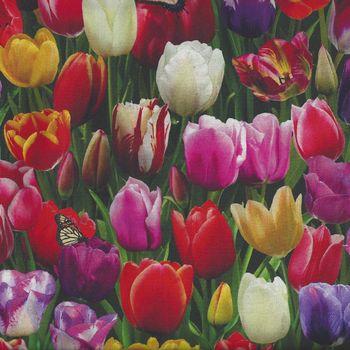 Elizabethand39s Studio Digital Garden Tulips Allover D535 Multi