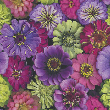 Flower Power by Leto For Clothworks Fabrics Y3053 Color 26 Zinnia