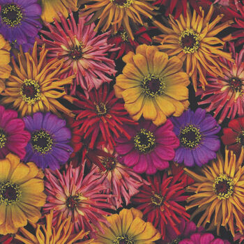 Flower Power by Leto For Clothworks Fabrics Y305 Color 36 Multi