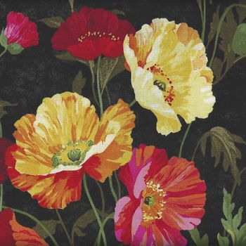 Full Bloom Poppies From Northcott Fabrics 21775 Color 99