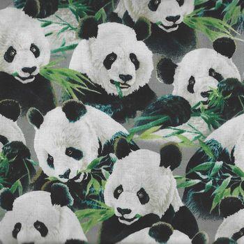 Imperial Panda Panel Quilting Treasures 164924979K
