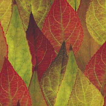 Natureand39s Narratives A Hoffman Spectrum Digital Print HR4669 178 Leaf Forest Floor