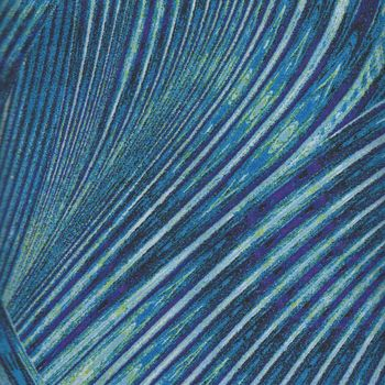 New Wave by Caryl Bryer FallertGentry for Benartex 6067 colour 55