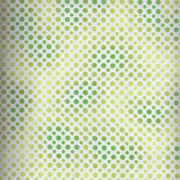 Ombre Dots by Quilting Treasures 164923413