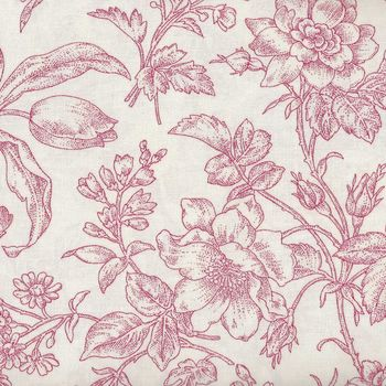 Raspberry and Cream by Marsha McCloskey for Clothworks Toile Y205982 Red