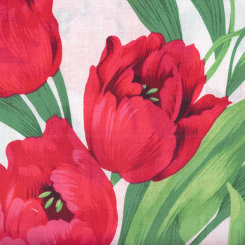 Ruby Tulips by Michael Miller CX2487WHITD