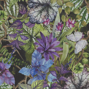 Terrarium By Jason Yenter for In The Beginning Fabrics 2241 3TER Colour 1