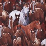 farm animals- horses- for elizabeths studio