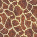 Animal Kingdom by Robert Kaufman Fabrics SRKD-19872-286 Wild Giraffe.