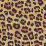 Animal Kingdom by Robert Kaufman Fabrics SRKD-19874-286 Wild Leopard.