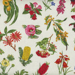 Australian  Wildflowers By Nutex 11630 Colour 1