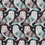 Barn Owl By Joel Dewberry-Birch Farm Cotton Fabric PWJD092- Egg Blue