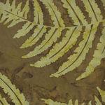 Batik By Mirah Fall Collection JJ-176/JA-BF1214/BD