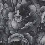Belleflower by Hoffman HP7576 055 Charcoal