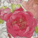 Blushing Peonies by MODA from Robin Pickens M48610-11