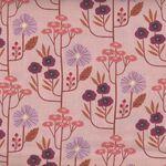 Dashwood Studio Wild 1926  Colour 1 Peach/Pink.