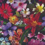 Digital  Mystic Meadow from Hoffmann Spectrum Fabrics P4282