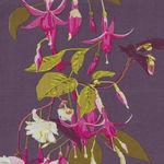 English Summer Anna Marie Horner Conservatory PWAM003 Name Dropping Colour Fusch
