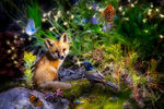 "Hoffman ""Imagine This"" 28""x 44"" Fox In Woods Panel Digital"