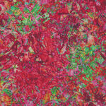 Illuminations by Dan Morris for QT Fabrics Digital  1649-27696-R