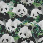 Imperial Panda Panel Quilting Treasures 1649-24979-K