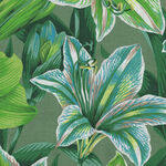 Kaffe Fasset Collective by Phillip Jacobs August 2020 PWP J104.Green Amaryllis.