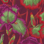 Kaffe Fasset Collective by Phillip Jacobs August 2020 PWP J105. Red Bearded Iris