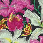 Kaffe Fassett Collective for Free Spirit  PWPJ 092 Black  Orchids