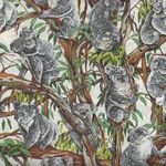 Koalas' from Nutex 11120 Colour 1