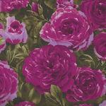 Kona Bay Roses 1883 Rose-10 Magenta