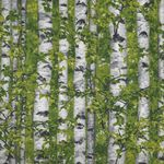 Naturescapes by Deborah Edwards for Northcott Fabrics Style 21844 Color 74