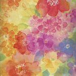 Quilting Treasures Sun-Kissed 1649-24674-X