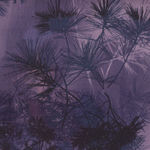 Robert Kaufman Enchanted Pines Cotton Fabrics AYC-15474-253 Boysenberry
