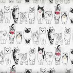 Sevenberry Black and White Cats 850119 Colour 1