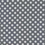 Spot On by Robert Kaufman ECZ-12872-12 Grey