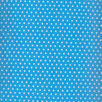 Spot On by Robert Kaufman EZC-12873-4 Blue