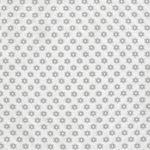 Sunnyside Up from Moda Fabrics M29057-21 Grey On White