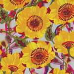 Vibrant Blooms For Free Spirit By Shannon Newlin PWSN031. Yellow  Patt. Sunshine