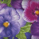 Viola by Chong-A Hwang for Timeless Treasures 4457 Colour Purple
