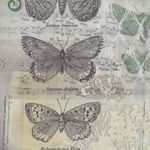 Wallflower Botanical By Tim Holtz from Eclectic Elements PWTH028.8Multi