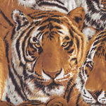 """Tigers"" by Exclusively Quilters Fabrics 3014-8445"